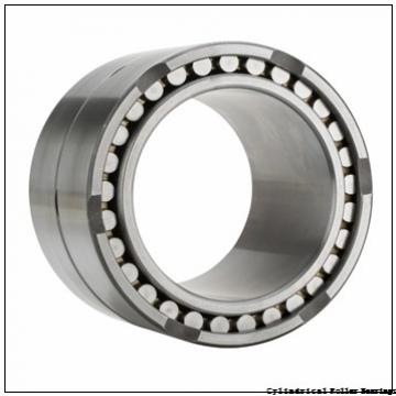 85 mm x 150 mm x 36 mm  NSK NU 2217 W Cylindrical Roller Bearings