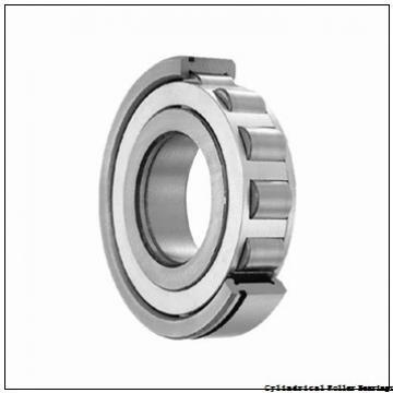 80 mm x 170 mm x 39 mm  NSK NJ 316 ET Cylindrical Roller Bearings