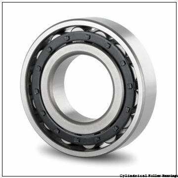 220 mm x 400 mm x 65 mm  NSK NU 244 M Cylindrical Roller Bearings